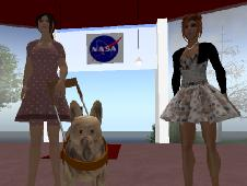Testing a virtual guide dog in Second Life