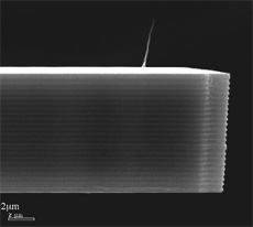 Figure 1. A carbon nanotube AFM probe tip.