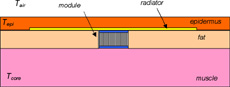 Figure 2. Schematic depicting a thermoelectric device implanted beneath the skin.