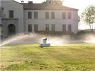 landscaping and sprinklers