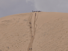 sand dunes in the Mojave desert