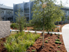 Sustainability Base and its landscaping