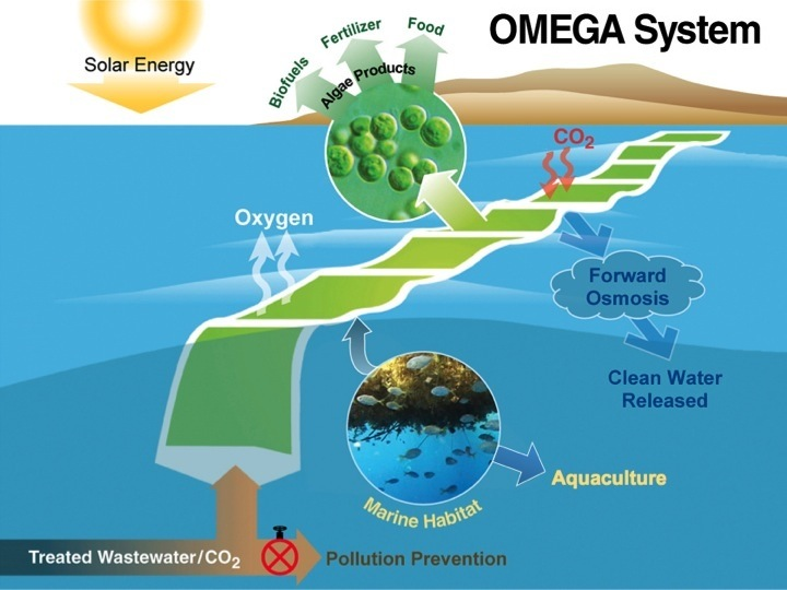 OMEGA Project (2009-2012) | NASA