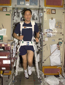 Astronaut Edward Lu, Expedition 7 NASA ISS science officer and flight engineer, exercises on the station's Treadmill Vibration Isolation System.