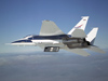 NASA Dryden's F-15B flight research test bed carries the shuttle thermal insulation panels on its underbelly.