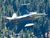 F-16D flying over trees