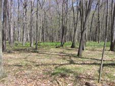 nasa plum brook map hunting - photo #24