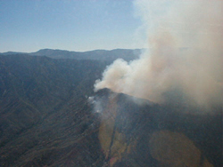 This is a photograph of the McNalley Fire in the Sequoia National Forest taken by the USDA Forest Service Region 5 Office, in July 2002.