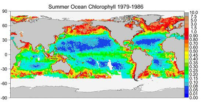 These maps show changes in the amounts of ocean chlorophyll between the 1980s and 1990s.