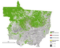Deforestation detections in Mato Grosso for 2002 2003 and 2004 are shown in yellow, blue, and red, respectively.