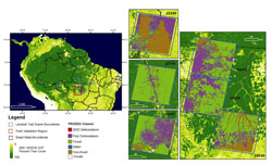 Location of Landsat test scenes and field validation area within the Brazilian Amazon. Percent tree cover values from the 2001 Vegetation Continuous Fields product show the extent of forest cover in the region.