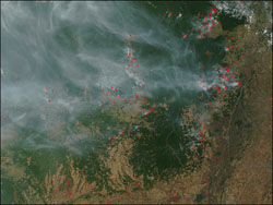 On August 11, 2002, the Moderate Resolution Imaging Spectroradiometer on the Terra satellite detected scores of fires marked with red dots burning in northern Mato Grosso in west central Brazil.