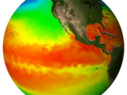 Image of a Sea Surface Temperature Model