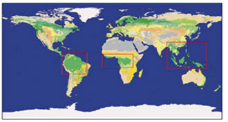Global land-cover map emphasizing with red rectangles the three regions in which all tropical forests (green color) are replaced with a mixture of shrubs and grassland in the study.