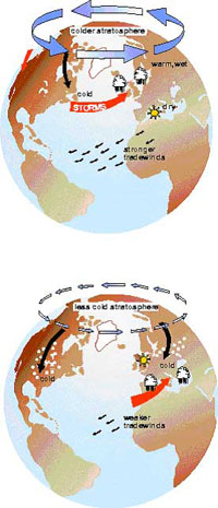 A positive (top) and negative (bottom) phase of the Arctic Oscillation.