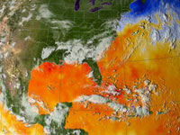 This visualization shows the warm waters that Hurricane Katrina tracked through. The data is from August 23 through 30, 2005.