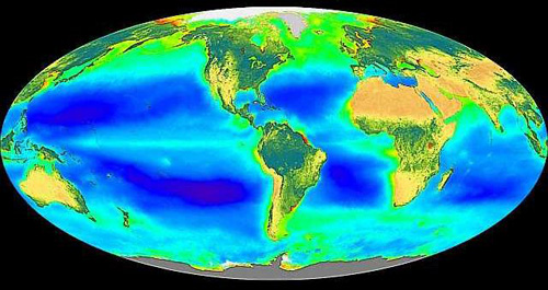 This image shows where there is more or less plant life on our planet.