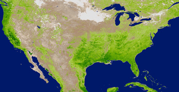 An image of enhanced vegetation index as measured by the NASA's Moderate Imaging Spectroradiometer  instrument aboard NASA's Terra and Aqua satellites in June 2001, during vegetation's summer peak.
