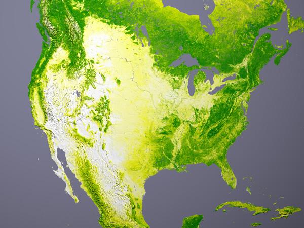 Couvert forestier nord-américain
