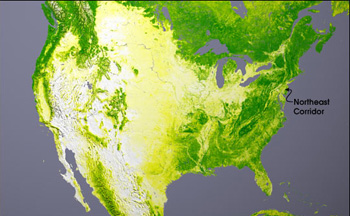 Global tree cover as measured by the NASA's Moderate Imaging Spectroradiometer instrument aboard NASA's Terra and Aqua satellites, showing areas with little or no tree cover to considerable tree cover.