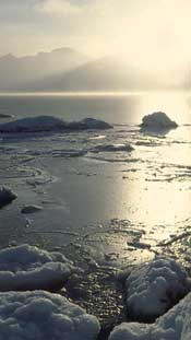 Photo of sea ice