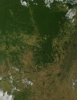 This image was taken by the Moderate Resolution Imaging Spectroradiometer on NASA's Terra satellite on June 28, 2006, and shows deforestation in Mato Grosso, Brazil.