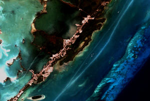 A Landsat 7 image of a coral reef near Key Largo, Florida
