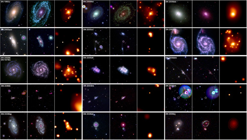 Pictured here in these 45 images are 15 recent supernovae, each shown in three wavelengths: optical, ultraviolet and X