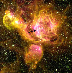 This false color image from the Curtis Schmidt Telescope in Chile shows a large star forming region in the Large Magellanic Cloud.