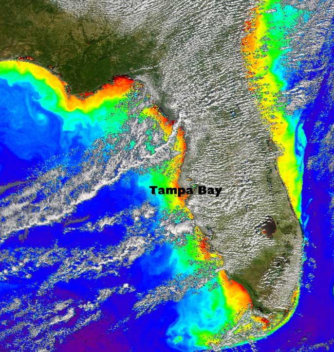 Florida Coastline Map.Nasa Nasa Satellites Eye Coastal Water Quality