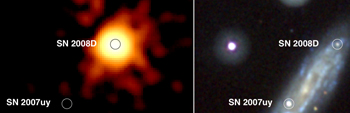 SWIFT images of SN 2007uy in Xray and visible light