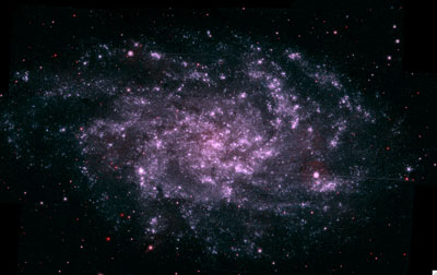 The Swift ultraviolet image shows the Triangulum Galaxy.