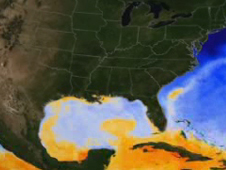 Temperature map of the Gulf of Mexico