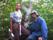 NASA researcher Lola Fatoyinbo seen here in June 2005 on the site where she conducted some of her field measurements.
