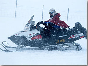 Nancy Maynard on a snowmobile during the herding