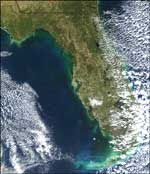 NASA's Terra satellite acquired this image of a red tide bloom along Florida's west coast December 22, 2001.