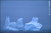Iceberg in North Atlantic Waters