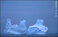 Iceberg in North Atlantic Waters