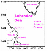 graph showing the study area in the Labrador Sea