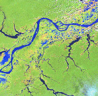 Landsat image of the Amazon River.