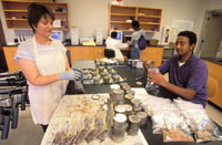 Image of soil moisture samples being processed in a laboratory.