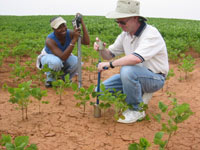 image of scientists sampling dry soil