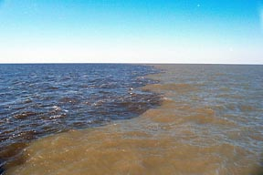 Sediment filled water meets the blue ocean in this photo at the outflow of the Neuse River after Hurricane Floyd