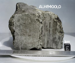 A 4.5 billion year old rock labeled meteorite ALH84001