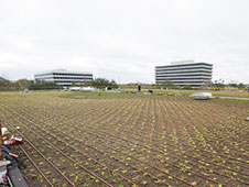 jsc2012e018599 -- Green Roof at Building 12