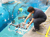 JSC2012-E-041399 -- A student releases his team's remotely operated vehicle into the pool.