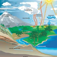 illustration of how water cycle works