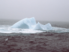 Iceberg off the coast of Newfoundland, 1984