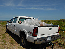 Beach clean up at Kennedy Space Center