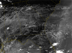 This image, from January 29, 2004, shows contrails over the southeastern US as seen by the Terra spacecraft.